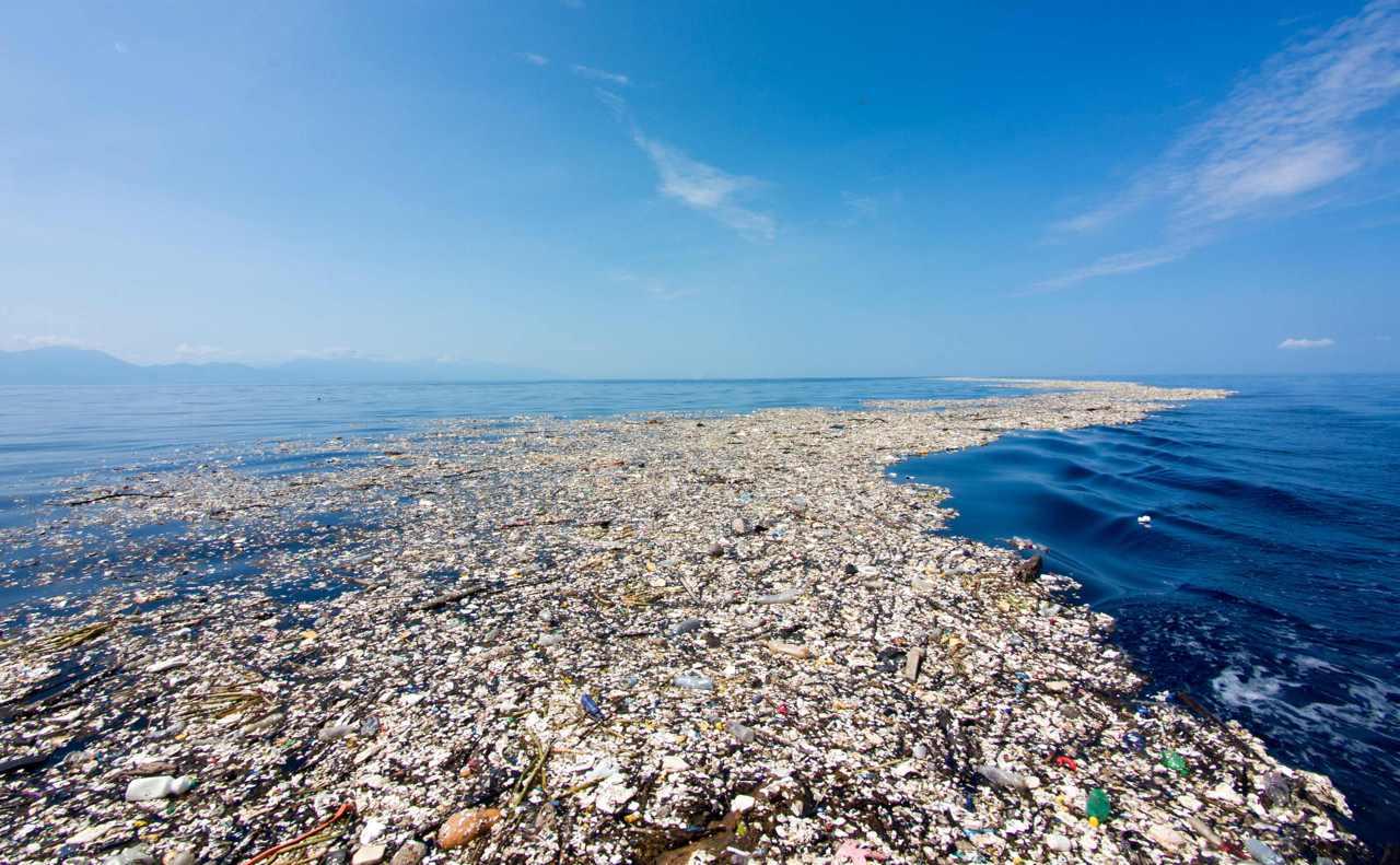 В Мировом океане существует целый Восточный мусорный континент, или Pacific Trash Vortex (Тихоокеанс