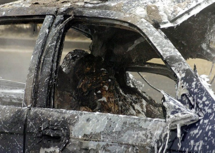 Ужасная находка в машине (1 фото)