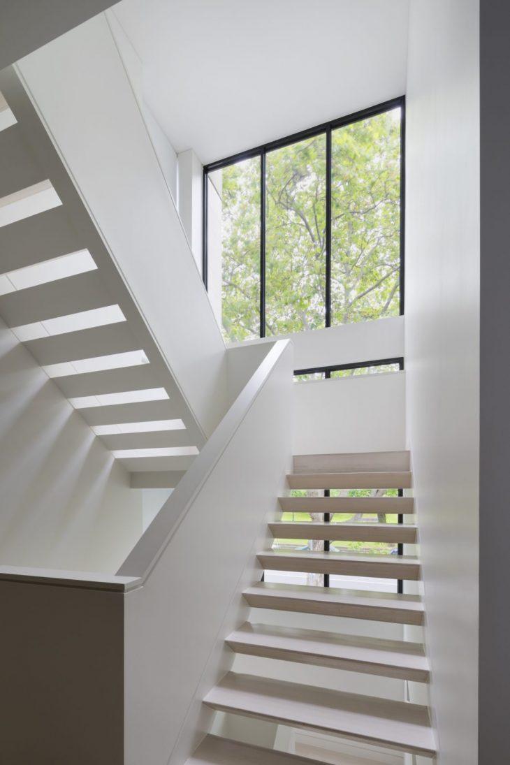Plane Tree House by Nexus Design