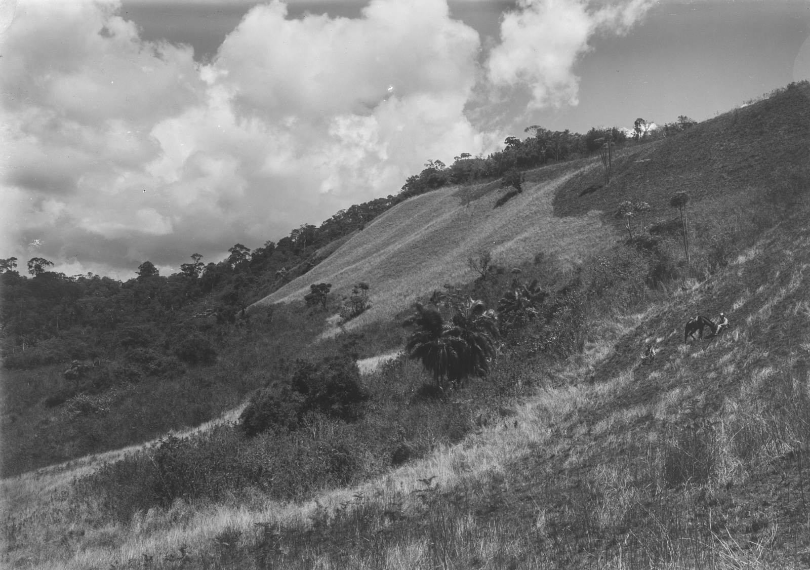 27. Пейзаж гор Улугуру