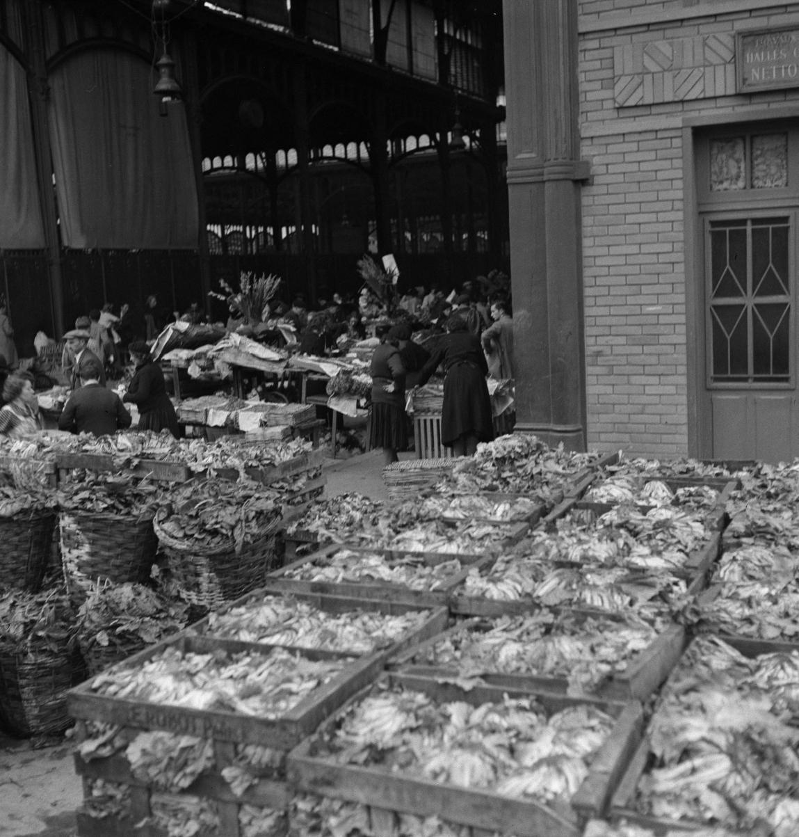 09. Выбор овощей для продажи варьируется в зависимости от сезона