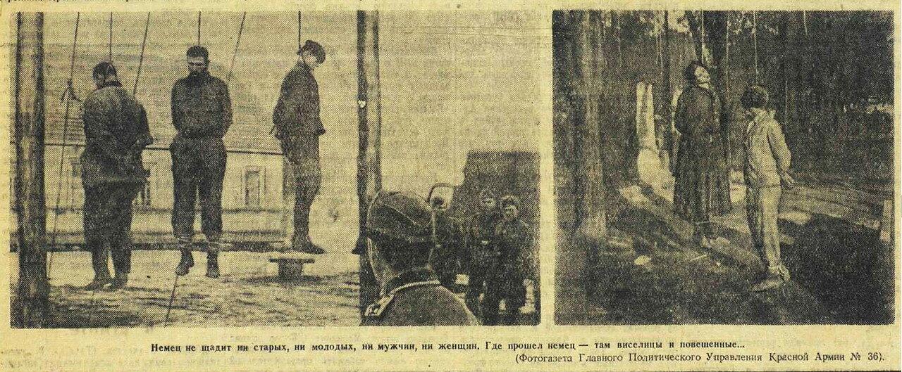 Красная звезда, 6 августа 1942 года