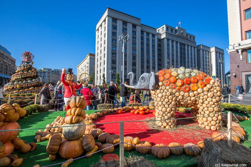 """Фестиваль """"Золотая осень-2017"""" в Москве"""