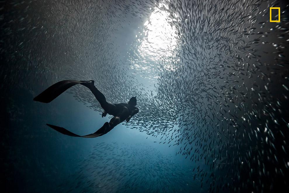 7. Отражения озера. (Фото Takahiro Bessho | National Geographic Travel Photographer of the Year Cont
