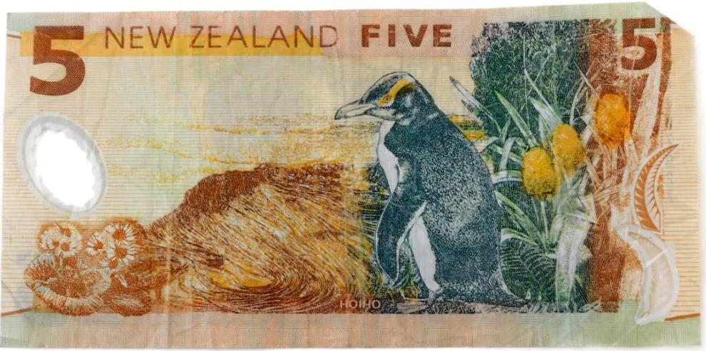 15. Красочная банкнота 500 франков из Французской Полинезии с флорой и фауной островов.