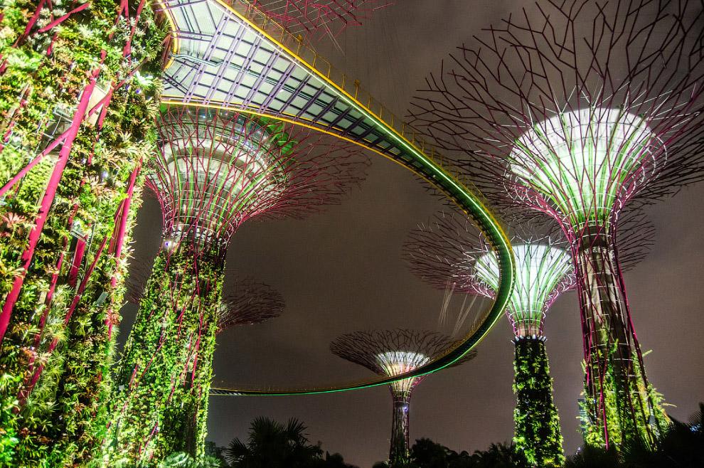Полюбуемся мостиком:  Супер деревьями: