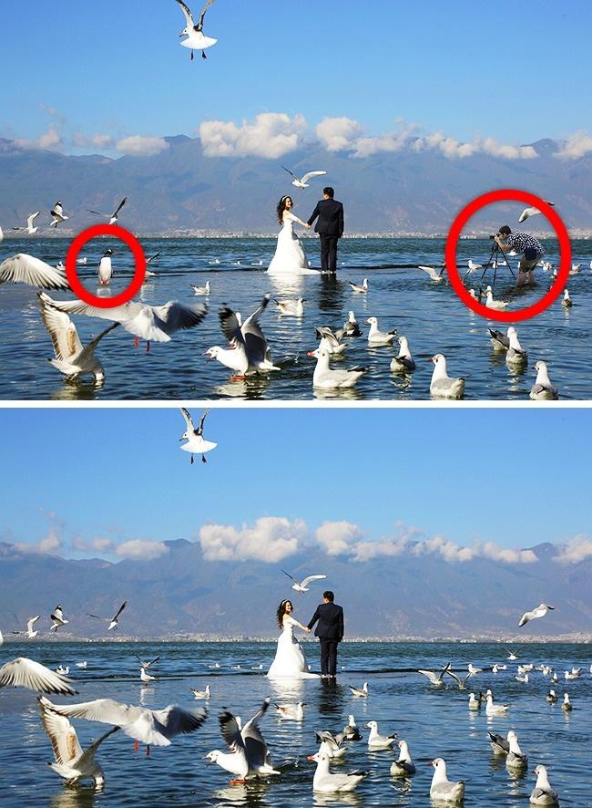 © reuters  © depositphotos  © depositphotos  Нафото свадебная фотосессия наозере