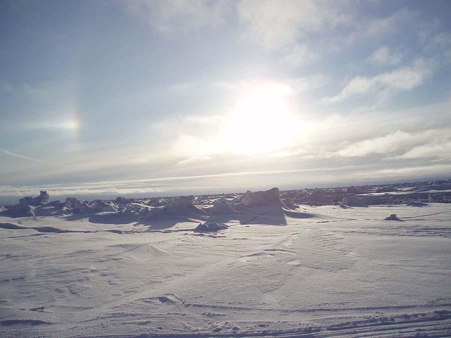 32. Поездка по тундре — Канадская Арктика Суровый климат Арктики зачастую слишком невыносимый даже д