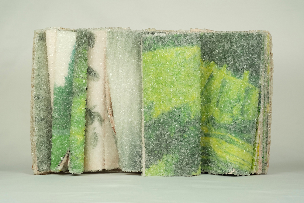 New Discarded Books Transformed Into Crystallized Sculptures by Alexis Arnold