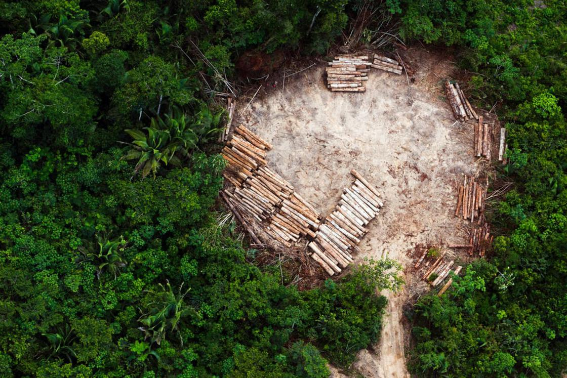 An aerial view of indigenous land in the region of Altamira in the Brazilian Amazon, cleared for ill