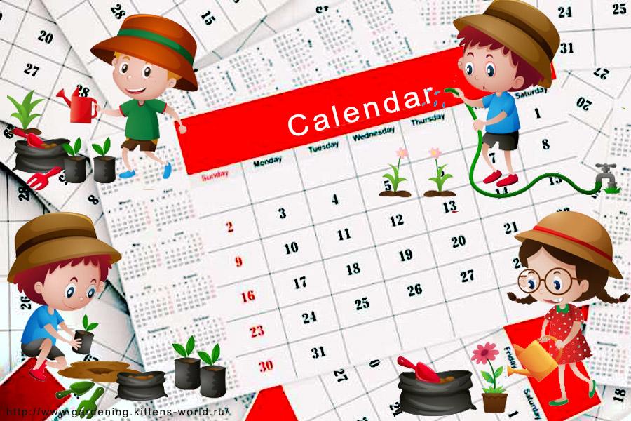 Многолетний посевной календарь для Ленинградской области, таблица