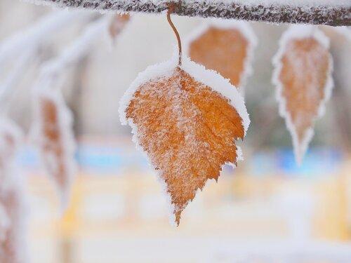 Зимняя накидка