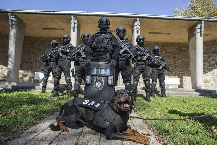 Полицейские разных стран (23 фото)
