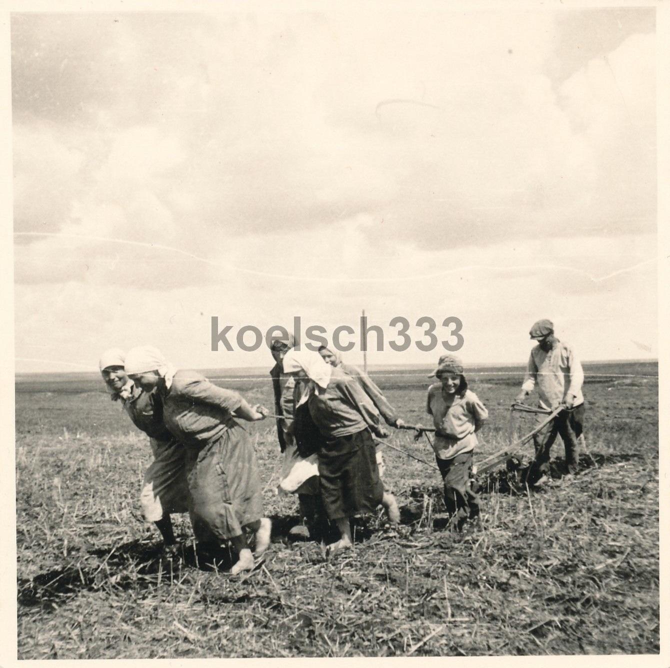 Русские крестьяне на полевых работах. Восточная кампания. Украина - Россия.jpg