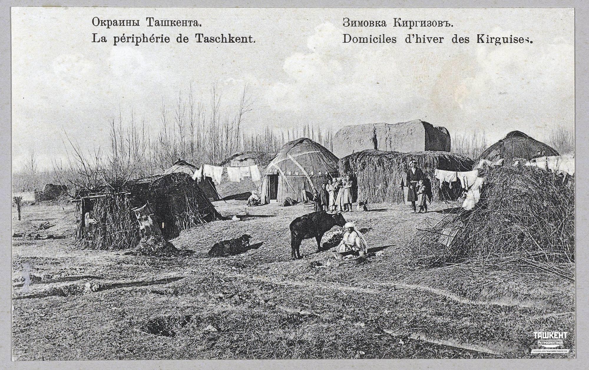 Окраины Ташкента. Зимовка Киргизов