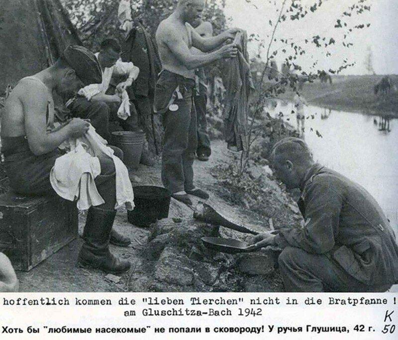 Немецкие солдаты ищут вшей.jpg