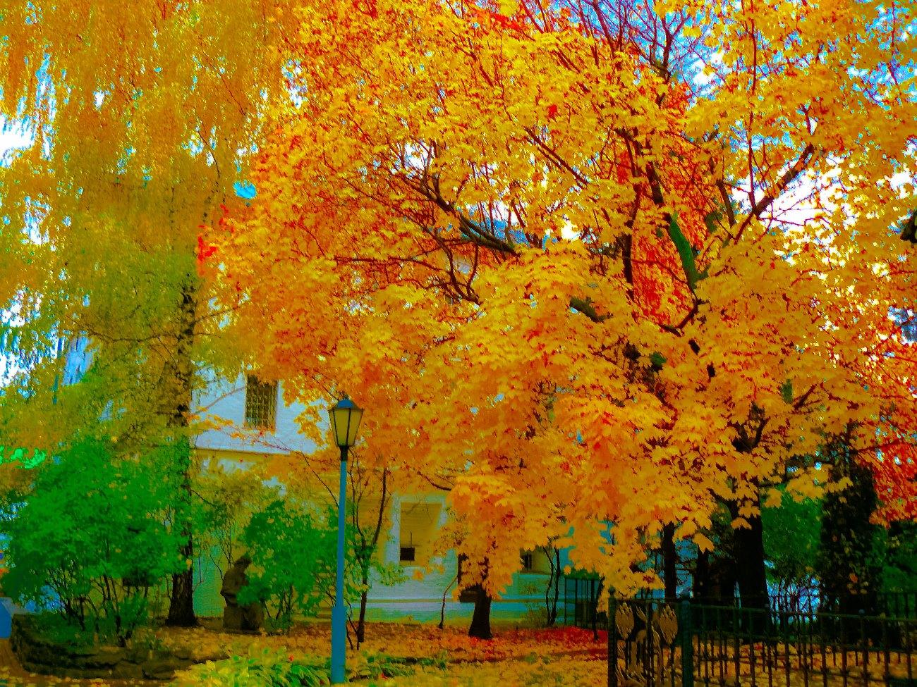 irina-fortuna=Novospassky-Monastery 06.jpg