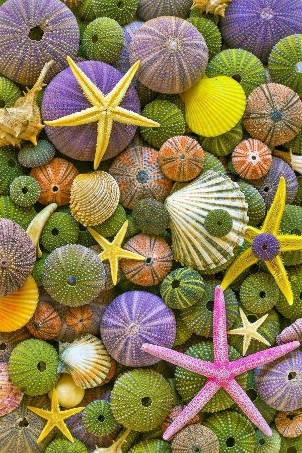 25 сентября Всемирный день моря. Поздравляю вас!