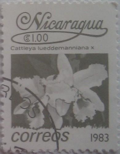 никарагуа 1983 цветок серый 1.00
