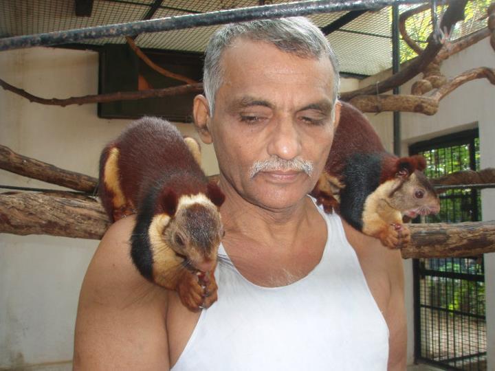 Индийская семья приютила сотни осиротевших диких животных, превратив свой дом в заповедник (7 фото)