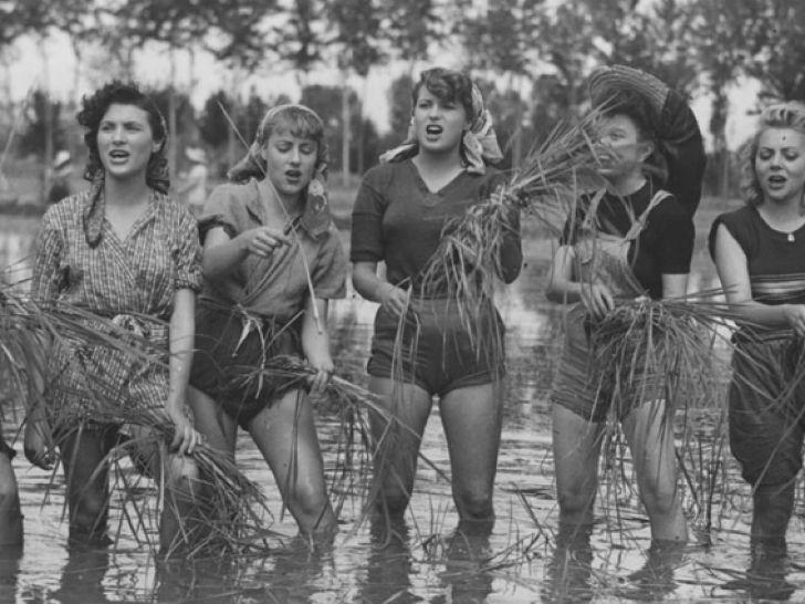 Итальянские женщины работают на рисовых полях, 1940-е годы.