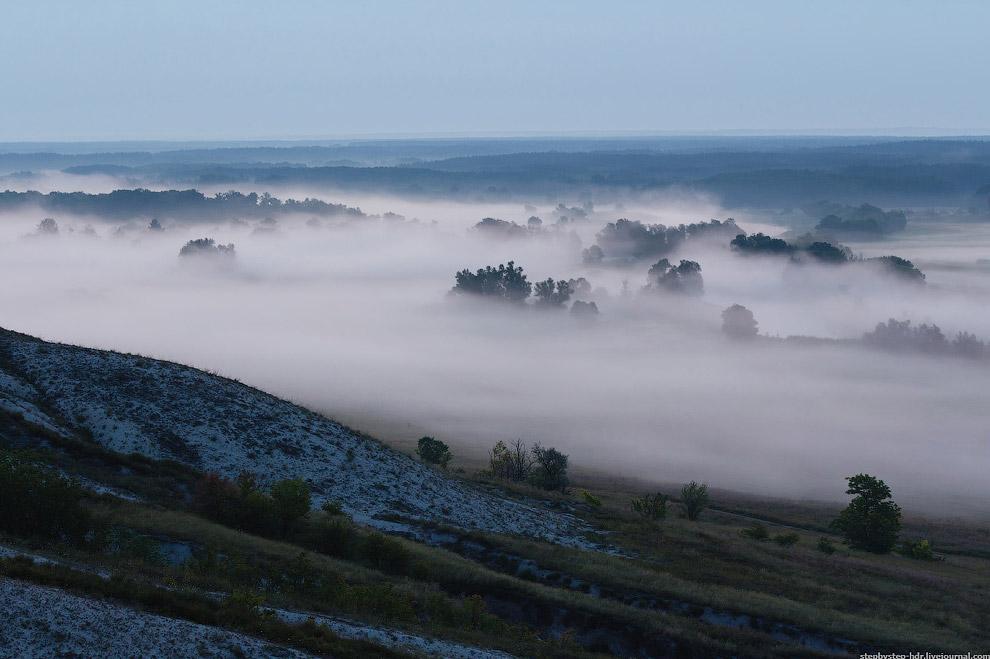 Есть несколько видов туманов. Поземный туман — туман, низко стелющийся над земной поверхностью (или