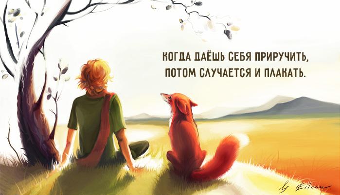 — На твоей планете, — сказал Маленький принц, — люди выращивают в одном саду пять тысяч роз&#