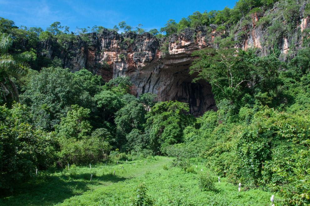 3. Геологи, работающие в государственном парке, говорят, что вся область, где находится пещера Лапа