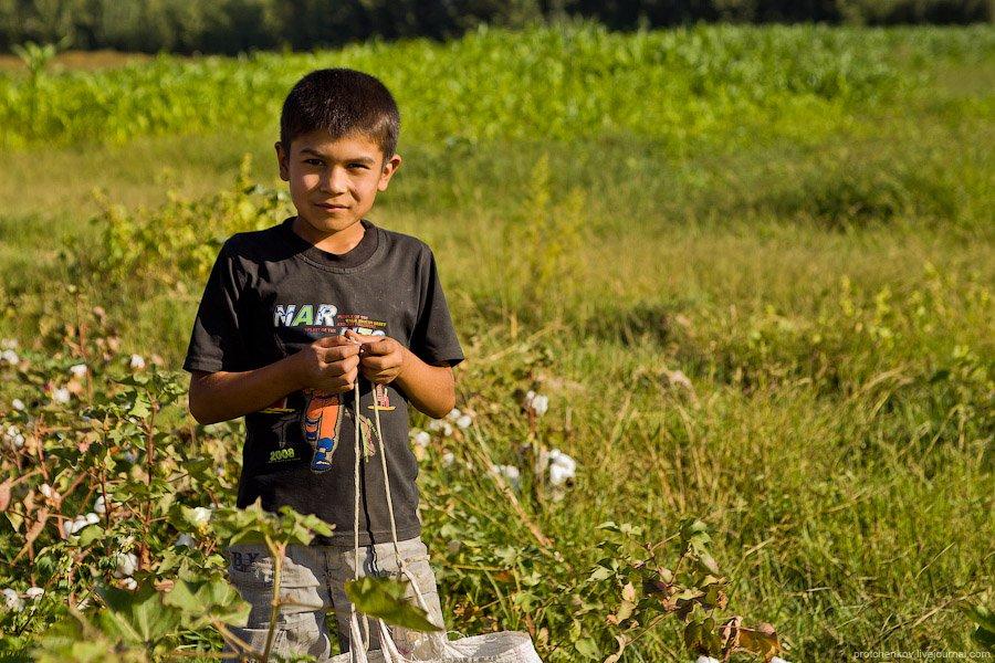Трудно сказать, наблюдая со стороны, насколько информация про детский труд является правдой. На это