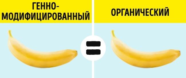© depositphotos     Если ГМ-продукты проходят качественный контроль наэтапе создания— о