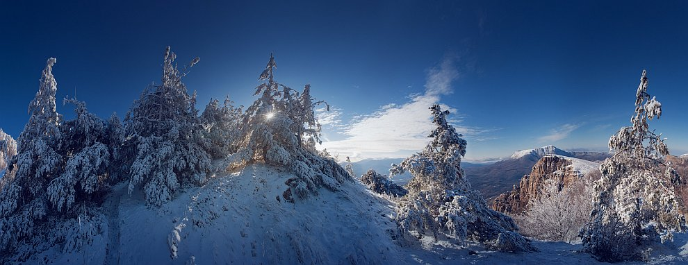 Деревья все покрыты снегом,  (кликабельно, 1400×725 px):