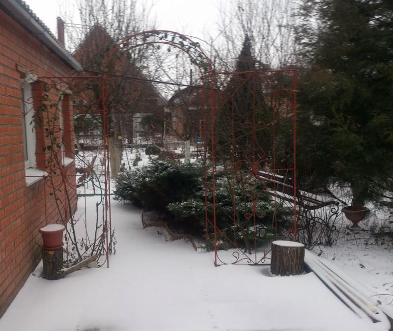 снег-3.jpg