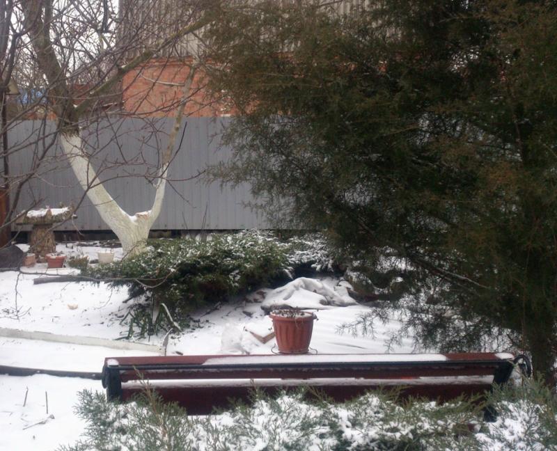 снег-7.jpg