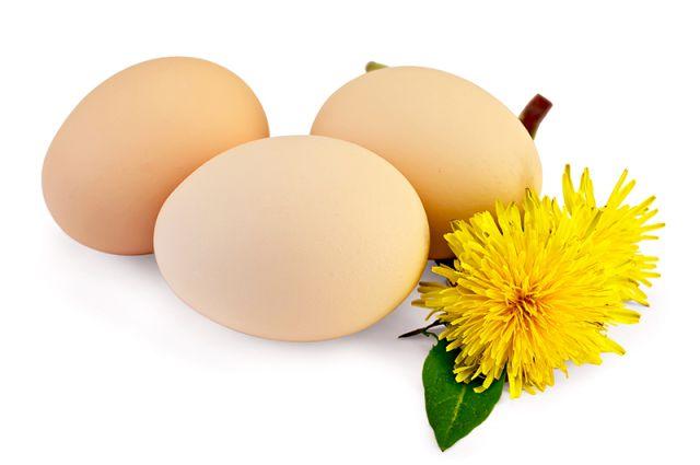 Открытки. Всемирный день яйца. Яйца и одуванчики