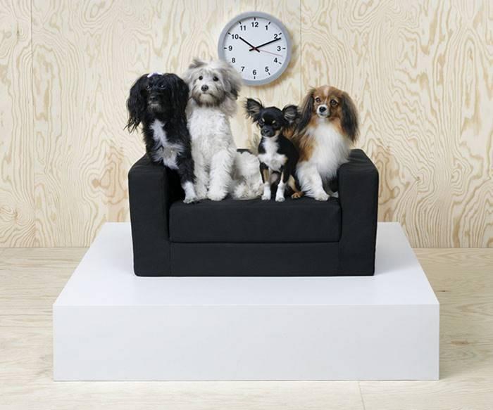 IKEA выпустила коллекцию мебели для домашних животных