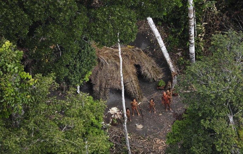 Долина Жавари, Бразилия   На площади примерно 80 тысяч квадратных километров жи