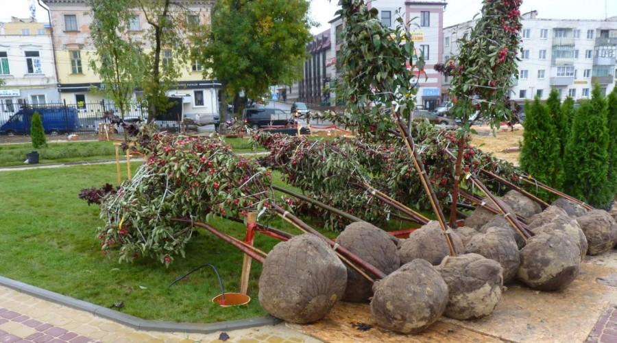 Жителей окрестных домов пригласят к участию в посадке деревьев в новом парке Калуги