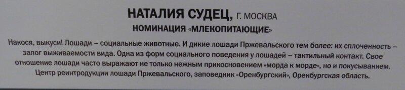 https://img-fotki.yandex.ru/get/478910/140132613.6a6/0_24108b_6aebd909_XL.jpg