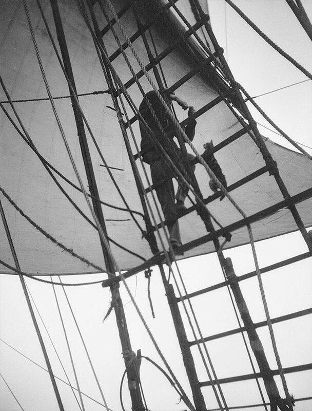 Моряк корабля «Pommern» учит кота ходить по вантам.
