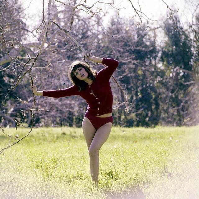 «Самая желанная женщина 1970-х» Ракель Уэлч: актриса, прославившаяся благодаря бикини (26 фото)