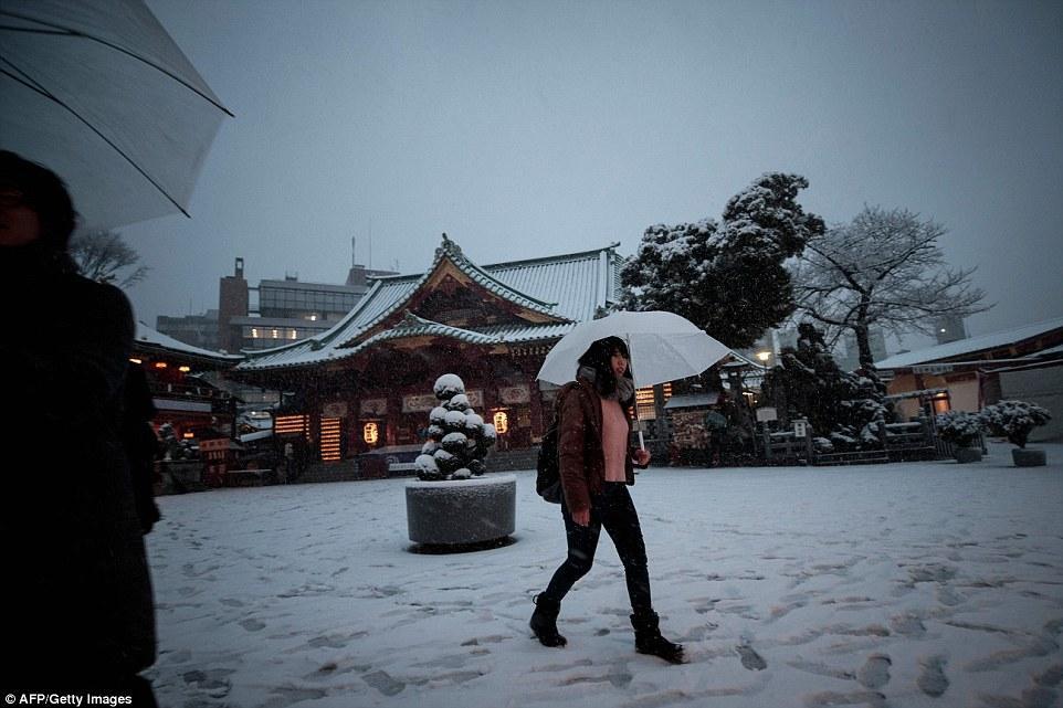 В самую холодную ночь в Японии труднее всего скорой помощи (26 фото)