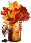 Autumn Gold #10 (30).png