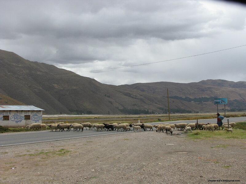 Перу - 3 - 483.jpg
