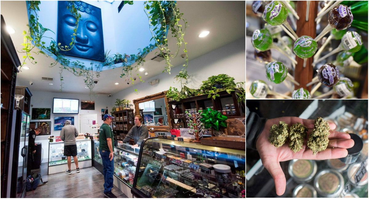 Закон о легализации марихуаны вступил в силу в Калифорнии