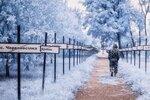 Владимир Мигутин снимает Чернобыльскую зону отчуждения в инфракрасном