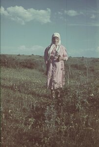 Крестьянская девочка на лугу