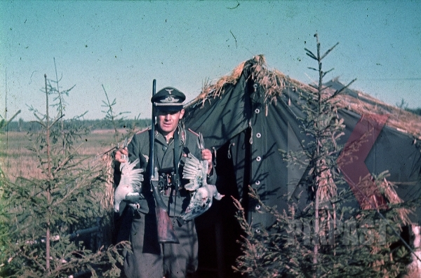stock-photo-german-luftwaffe-flak-officer-shotgun-rifle-hunter-hunting-birds-tent-zeltbahn-russia-camo-1941-3-flak-abt-701--8044.jpg