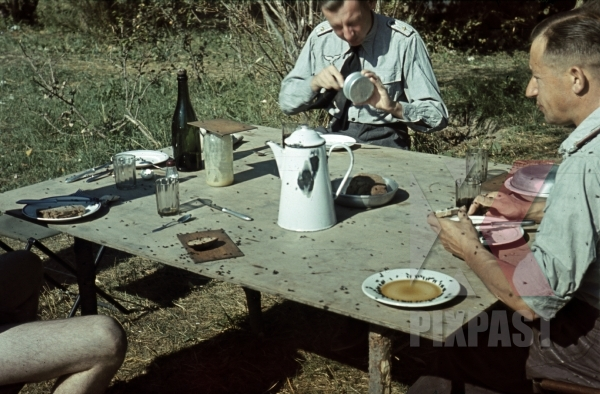 stock-photo-luftwaffe-ground-unit-officers-in-summer-tunics-russia-summer-1942-eating-lunch-with-bread-coffee-and-flies-11372.jpg