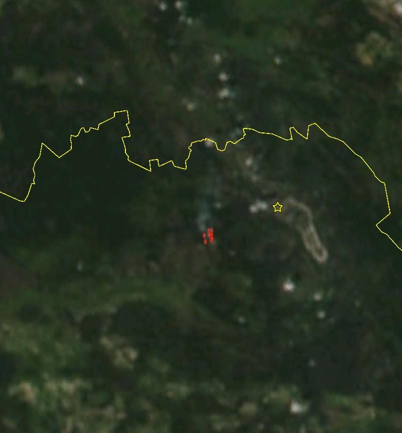 Пожар вчернобыльской зоне отчуждения распространился на25 гектаров