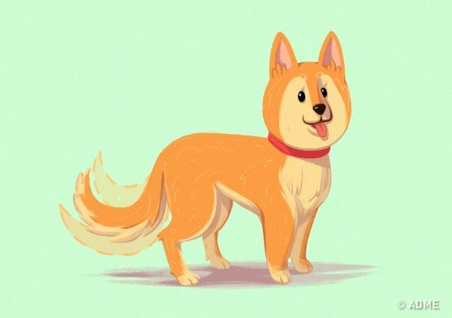 Если собака медленно виляет хвостом, она непонимает, что происходит, испрашивает, что выотнее хо
